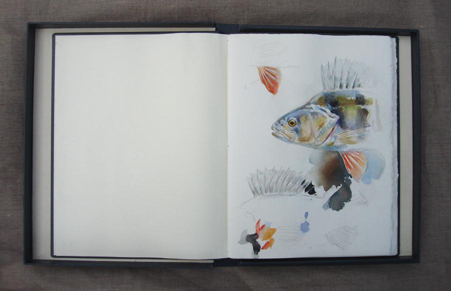 RJ_Sketchbook_04