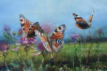 Påfågelöga, Akvarell 102×152