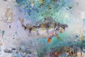 Abborre 2002 Olja 35 x 55