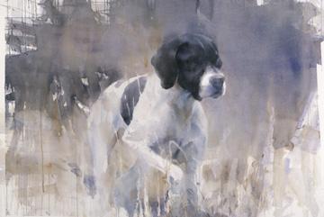 Pointer Akvarell 75 x 105